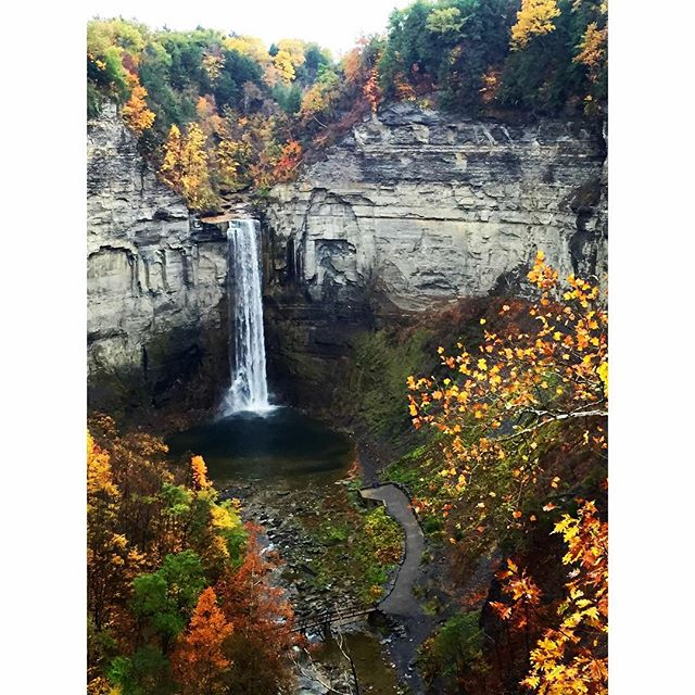 Daily Dose of Fresh Air 🏼 Enjoyed a last minute impromptu hike through Taughannock Falls State Park. Rain, clouds and cold weather won't hold me back! It's just a different kind of beauty that too often gets pushed aside. But that's ok...wide open trails for me!