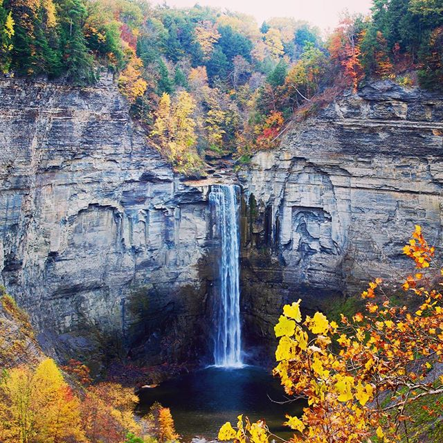 Taughannock Falls | Autumn 2015 for more photos of Taughannock, check out our Facebook album. Link in bio!