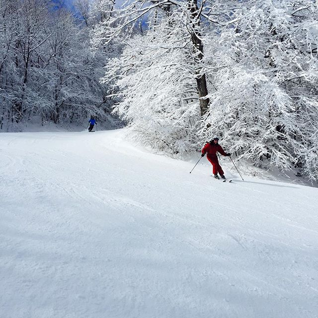 Sunshine and fresh snow. Does it get any better than this?